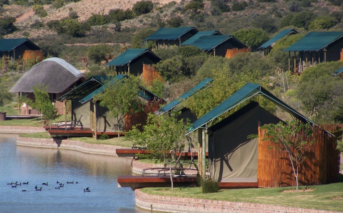 Oudtshoorn - Buffelsdrift Game Lodge