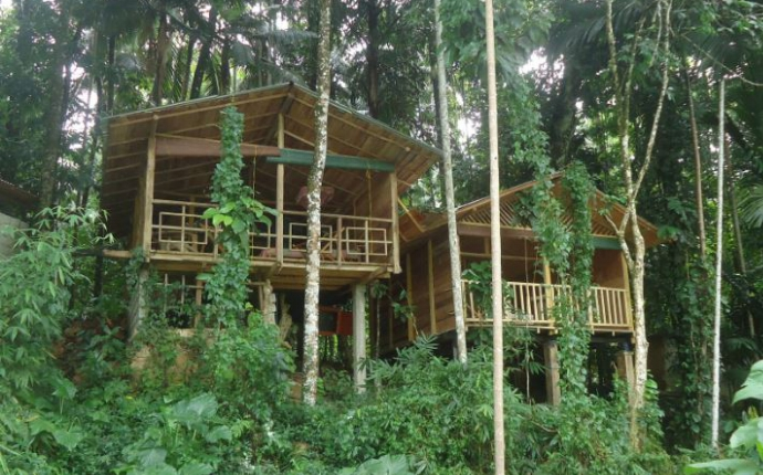 Kitulgala - Rafters Retreat - boomhut