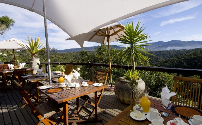 Plettenberg Bay - Hog Hollow 1